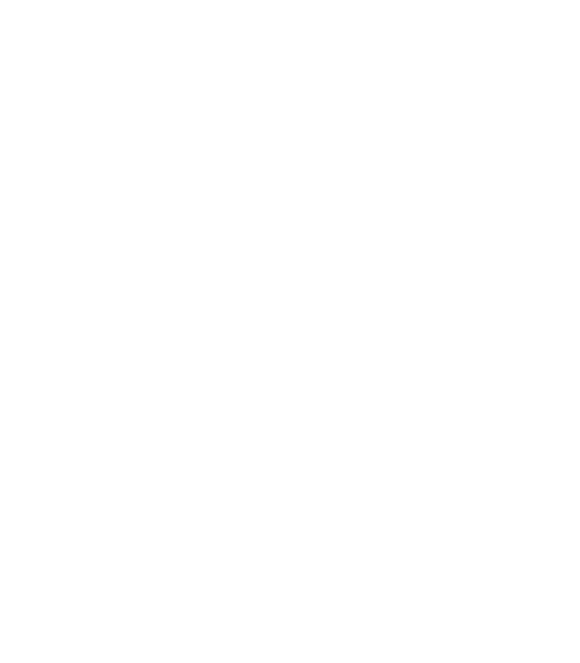Bangalore Equitation Academy Demo